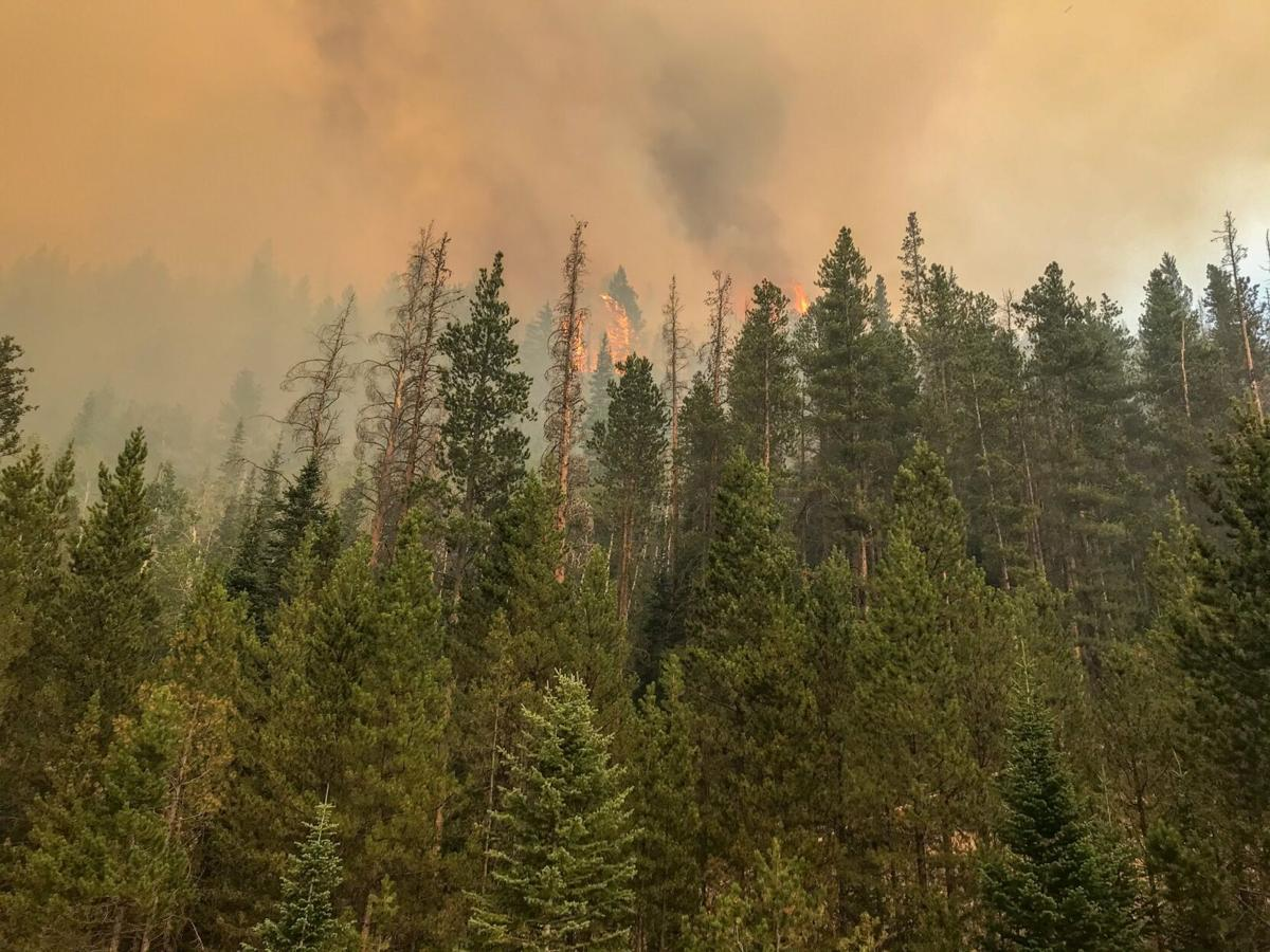 cameron peak fire - photo #15