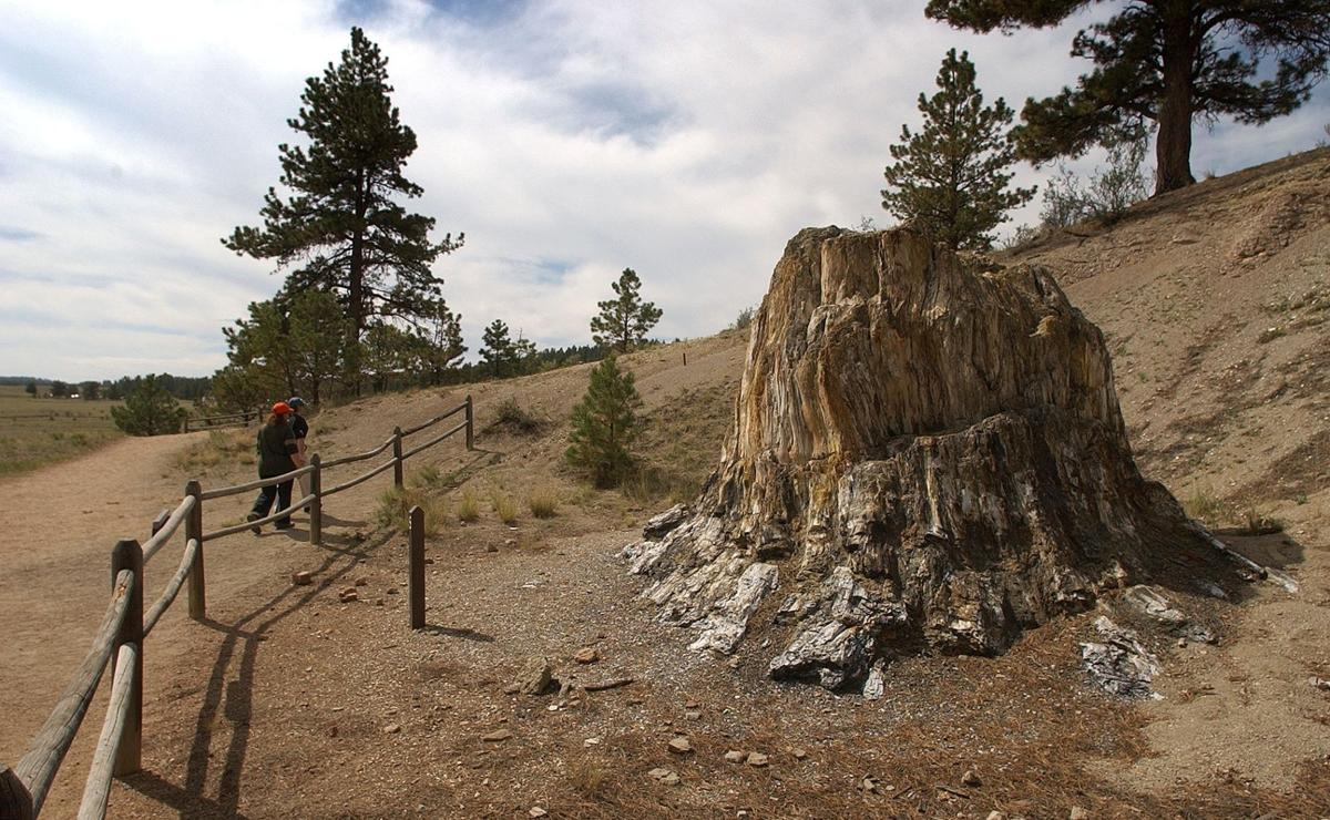 228bb5b5a81c Florissant Fossil Beds National Monument expansion gains support ...