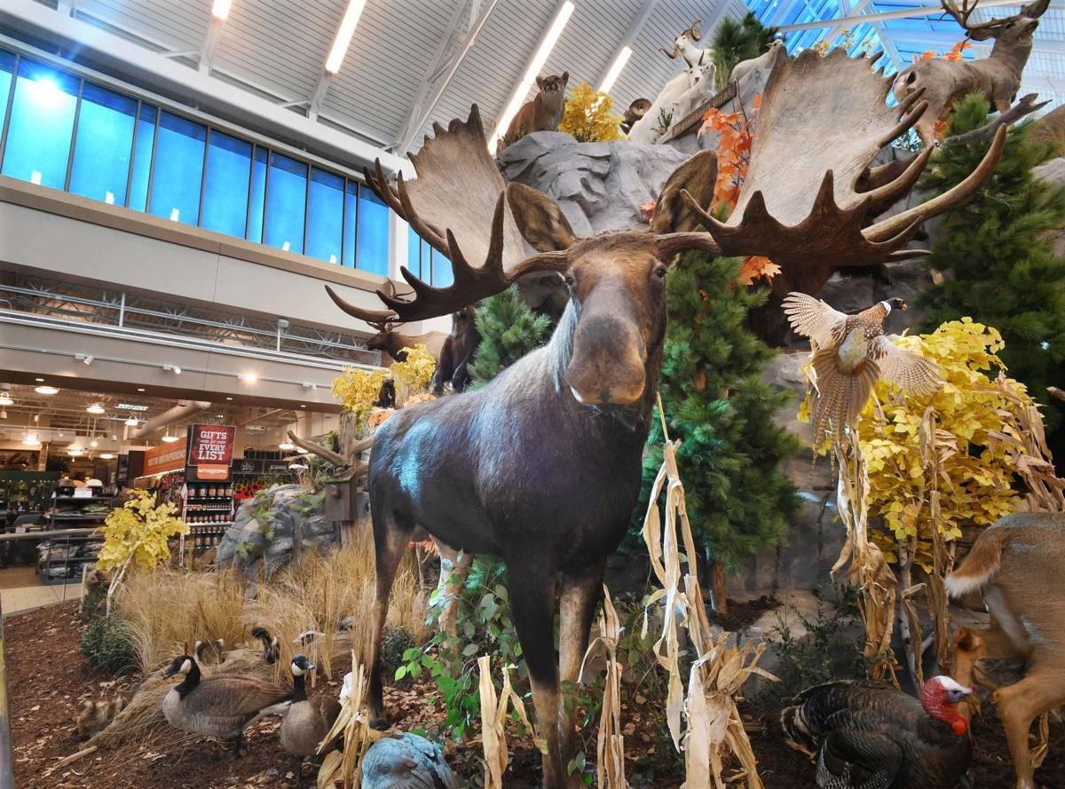 e26904afa0a SCHEELS WILDLIFE PHOTO. Caption +. Shoppers at the Scheels All Sports store  ...