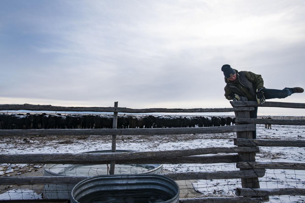 122318-news-ranching 5.JPG