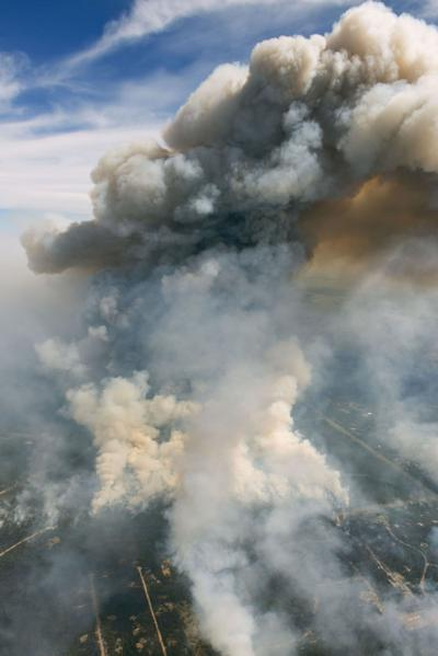 Black Forest Fire: Ways to get, give help (Thursday)