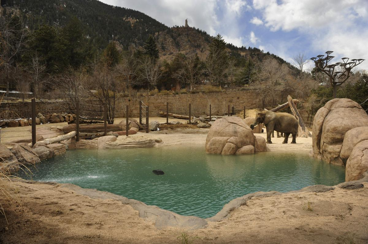 zoo-cheyenne-one-gazette