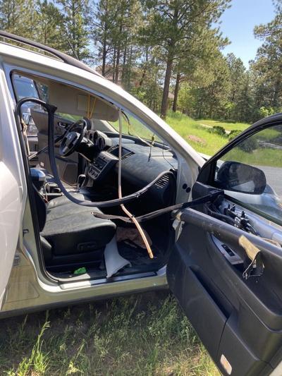 Bear breaks into vehicle (web copy)