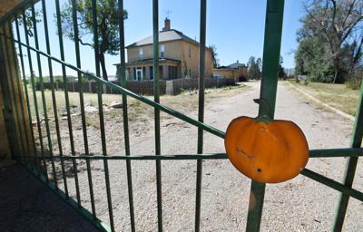 Venetucci Pumpkins