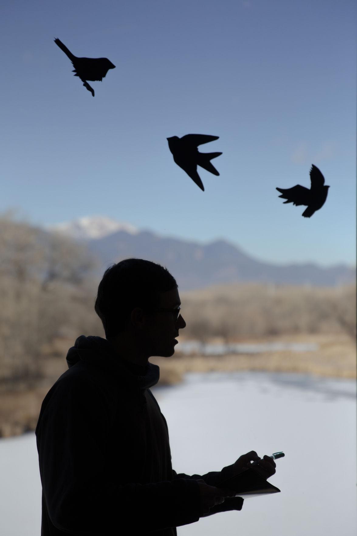 011220-news-birds 02
