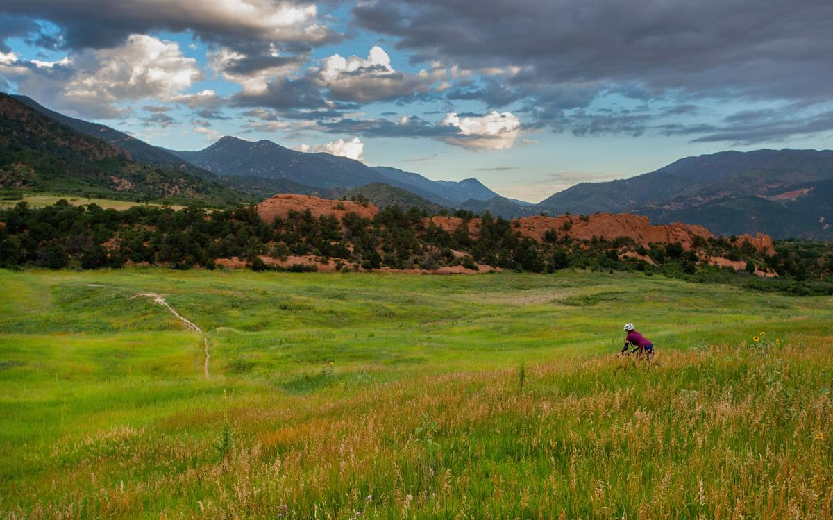 A mountain biker rides through the tall, lush grasses and wildflowers in Red Rocks Canyon Open Space early Wednesday morning, July 29, 2015. The Colorado Springs park resembles Crested Butte or Ireland after a record year of rain. (The Gazette, Christian Murdock)