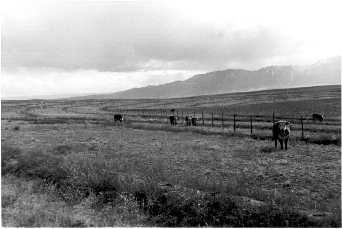 History of Cheyenne Mountain area told through pictures
