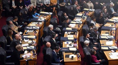 Colorado State Senate (copy) (copy)