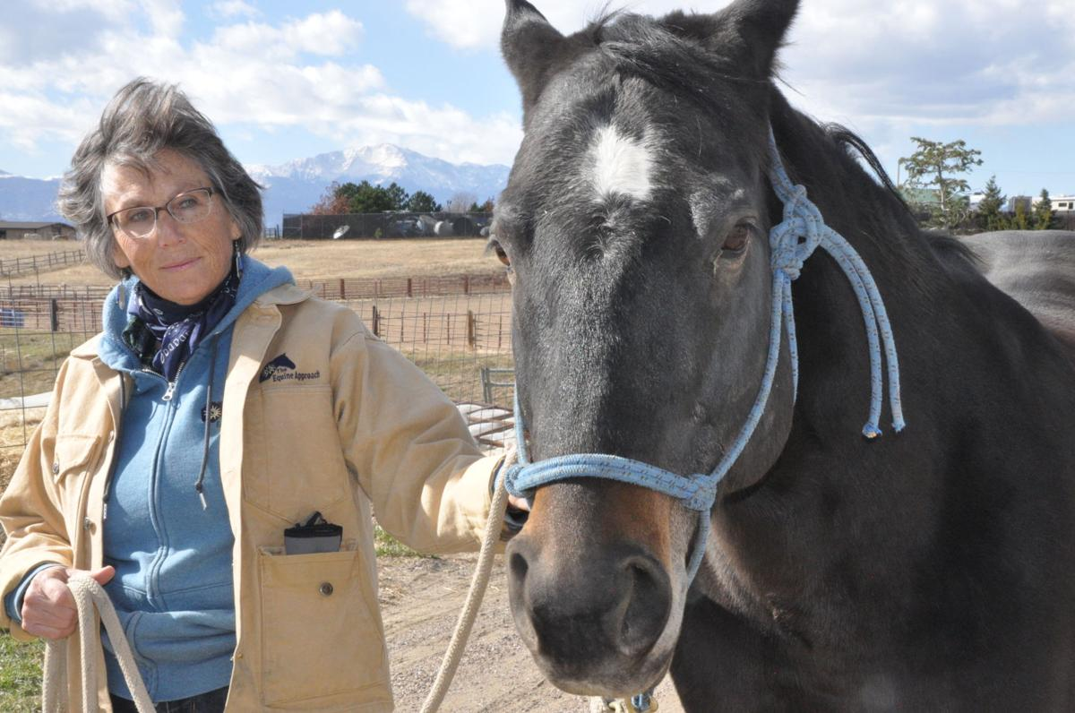 Equine Approach owner Nancy Beers horse