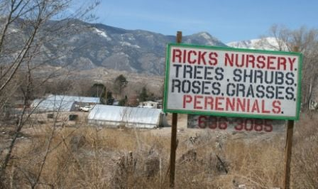 Rick S Garden Center Plans Nursery To Replace One That Closed