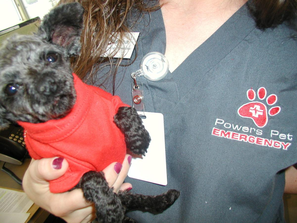Powers Pet Emergency & Specialty opens state-of-the-art