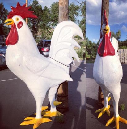 new chicken.jpg
