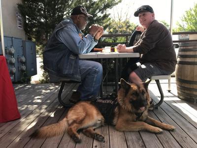 Veteran Sheepdogs of America