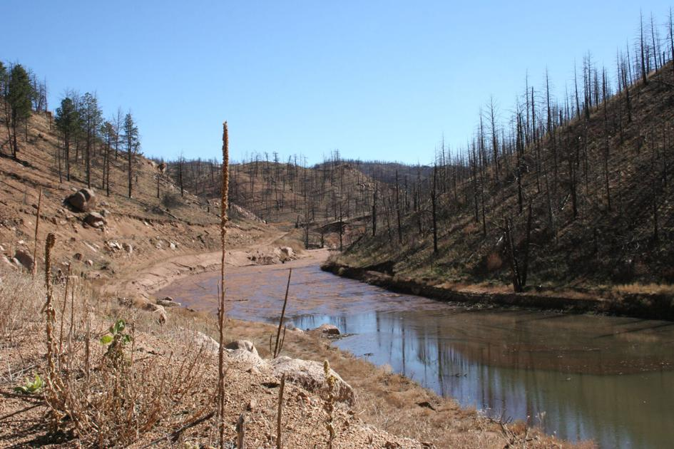 Wildfires & Watersheds: New science brings new insights | Life in the Watershed