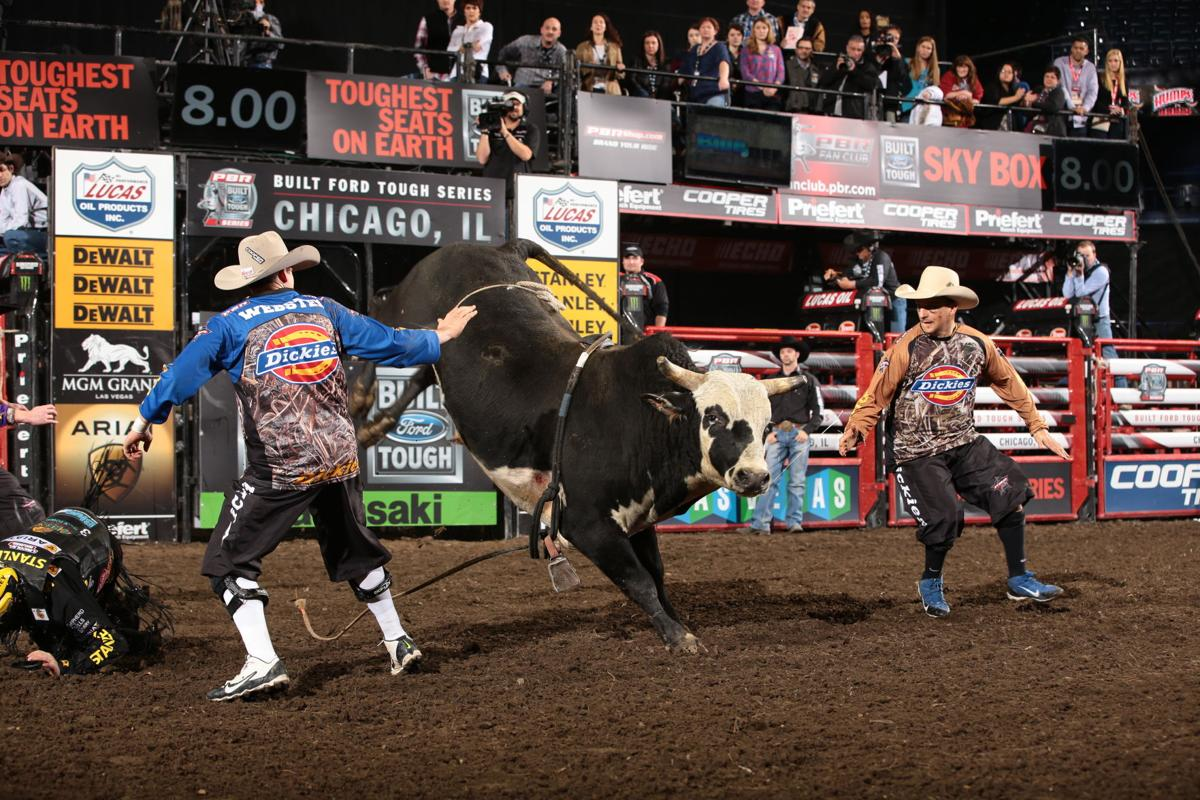 Matt Triplett rides Silver Creek Pro Rodeo's Justified for 86.25 during the first round of the Chicago Built Ford Tough series PBR. Photo by Andy Watson