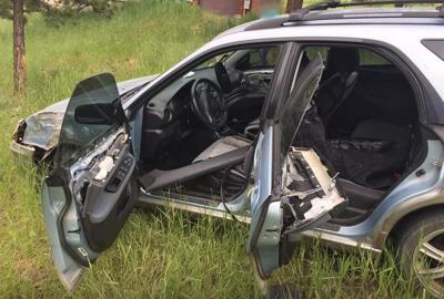 Bear crashes car