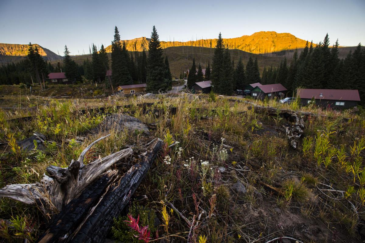 The charred remains of the 2002 Big Fish Fire lies in the foreground with Trappers Lake Lodge and its cabins in the background Thursday, Sept. 8, 2016. The fire changed the landscape around the lake from a dense forest to wildflowers and small aspen groves with open views of the lake and the Flat Tops Wilderness area. (The Gazette, Christian Murdock)