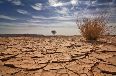 dry dirt cinoby (iStock)