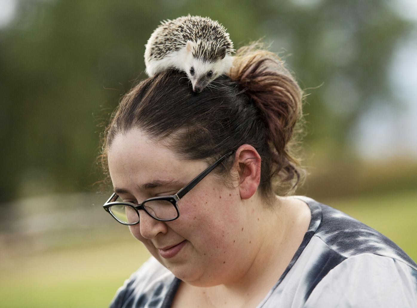 082921-life-hedgehogs 06