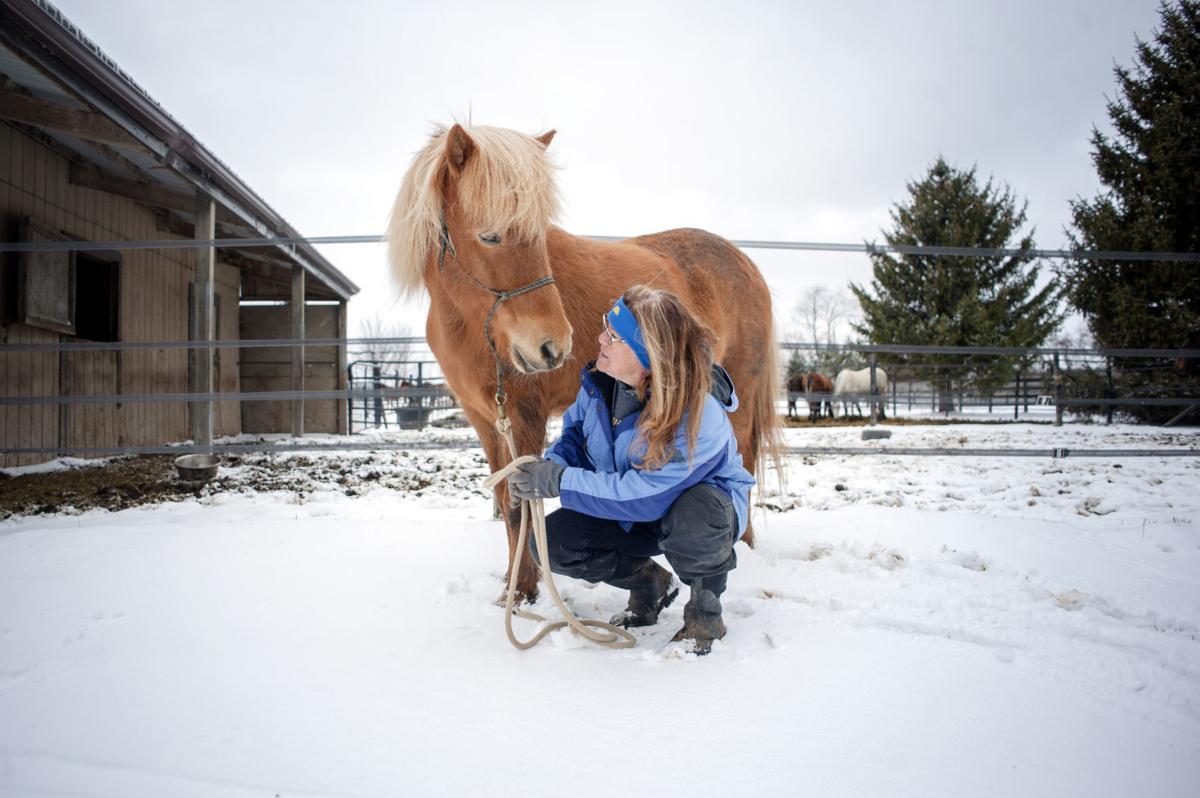 181106_HORSE