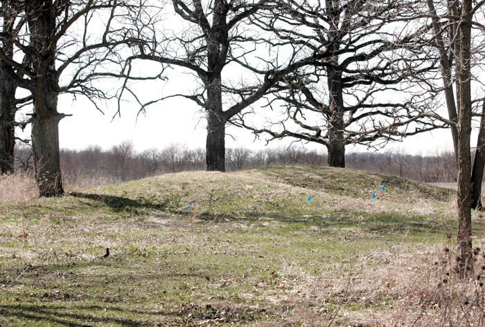 Whitewater hopes to restore historical effigy mounds