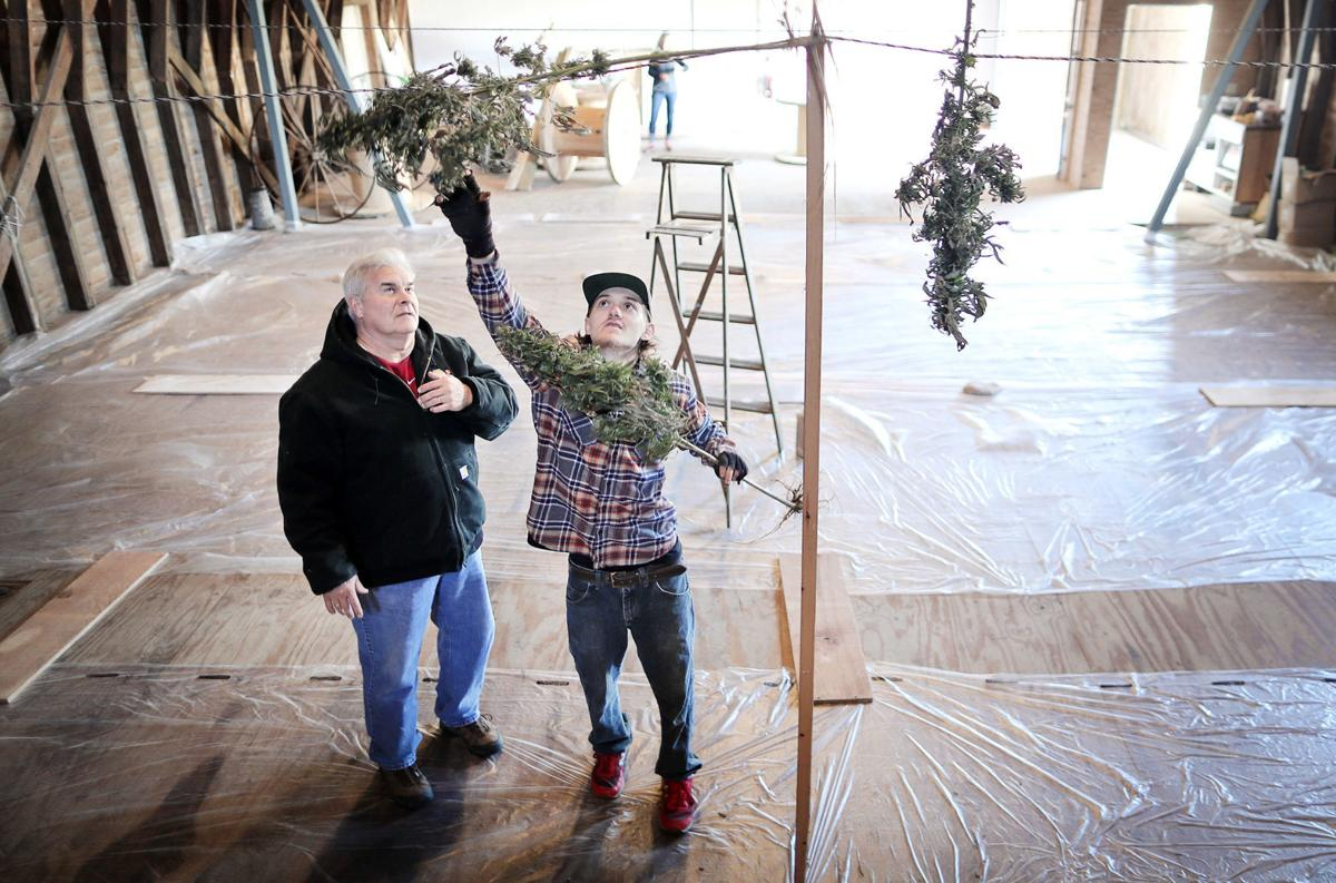 Hemp struggles in first year, but advocates remain