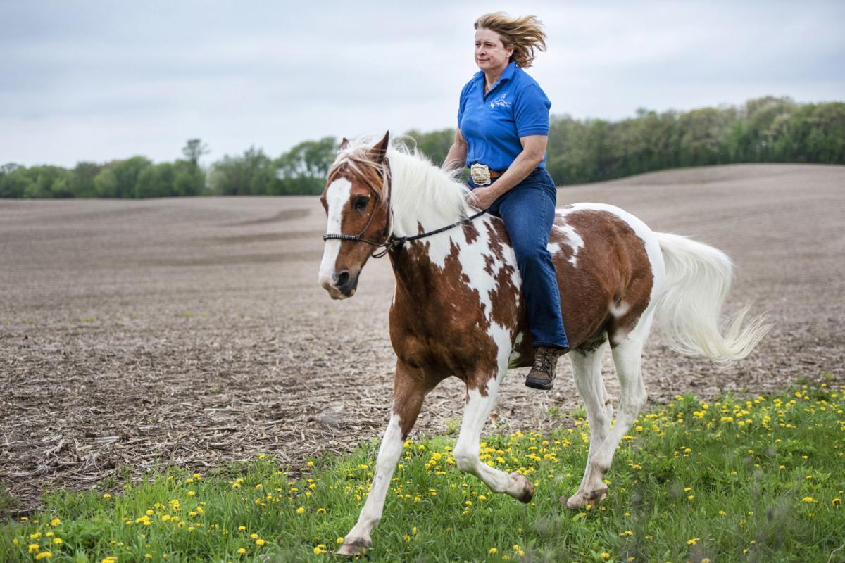 180512_HORSE01