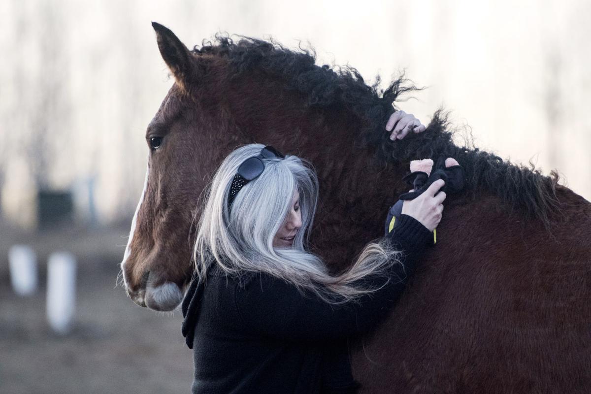 171215_HORSE03