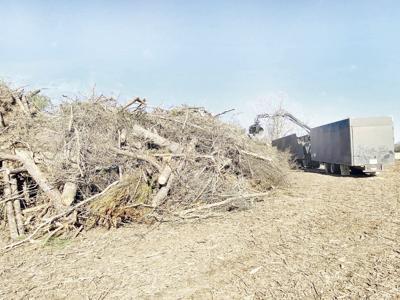 Storm debris estimate at least doubled