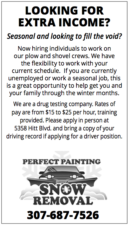 Perfect Painting - Snow Removal