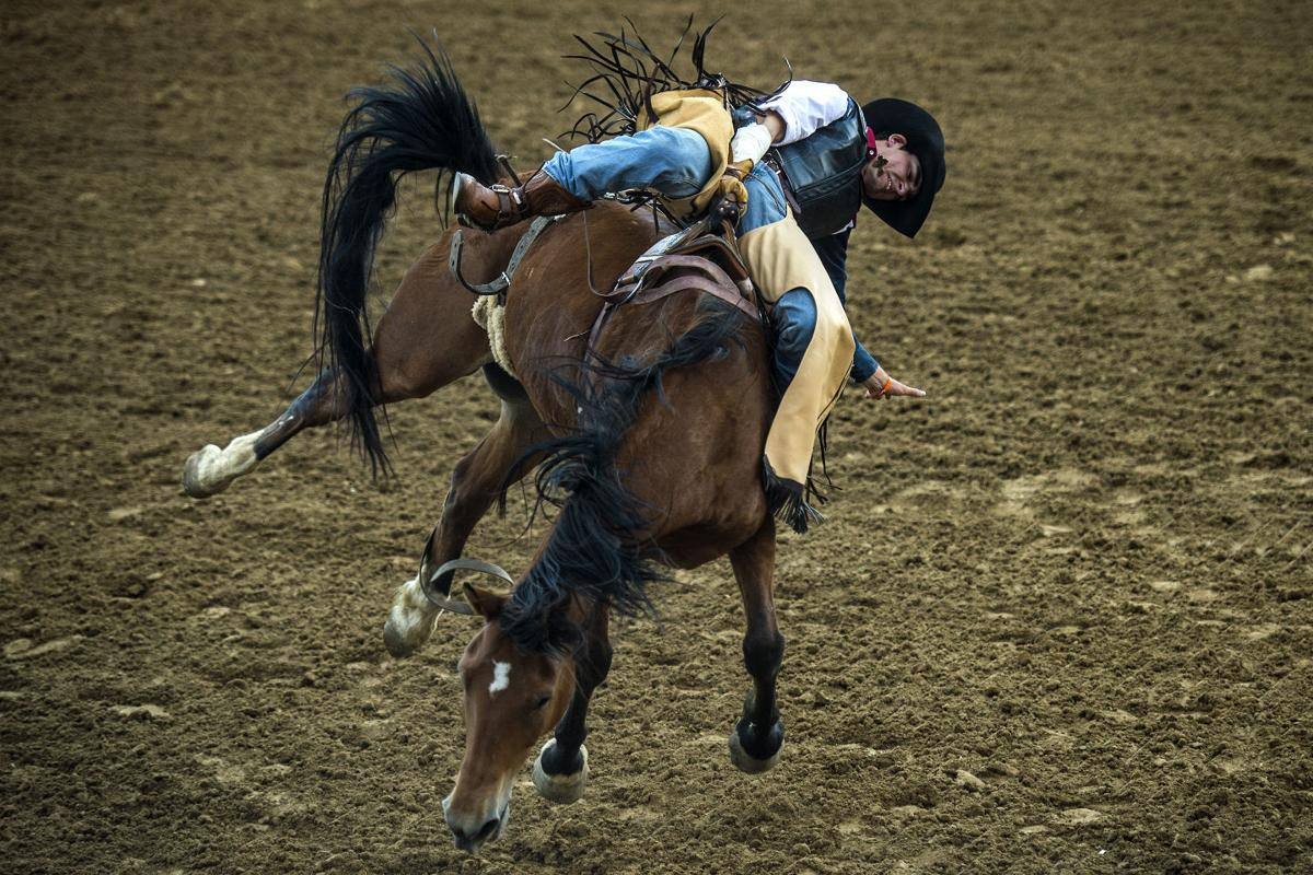 Despite Being New To Bareback Riding Texan Wins 11th