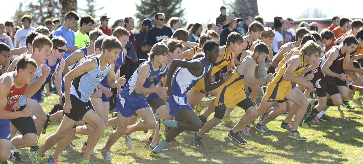 cross country federation meet 2012 electoral votes