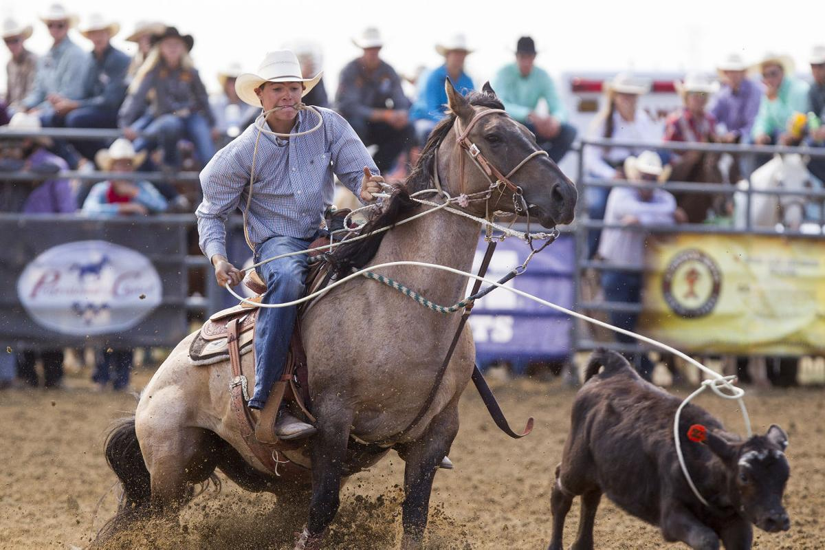 Lone Gillette Senior Cowboy Fighting For Strong Finish