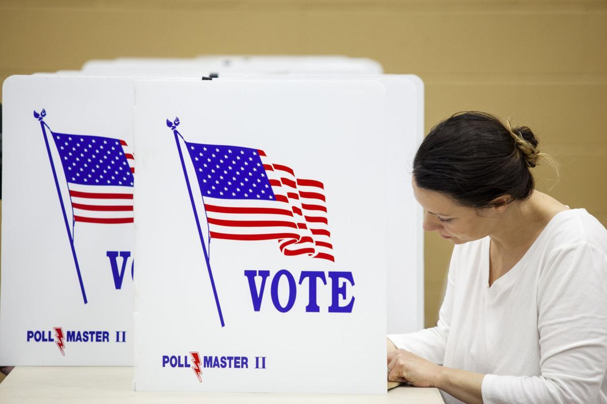 110320-ele-voting2.jpg