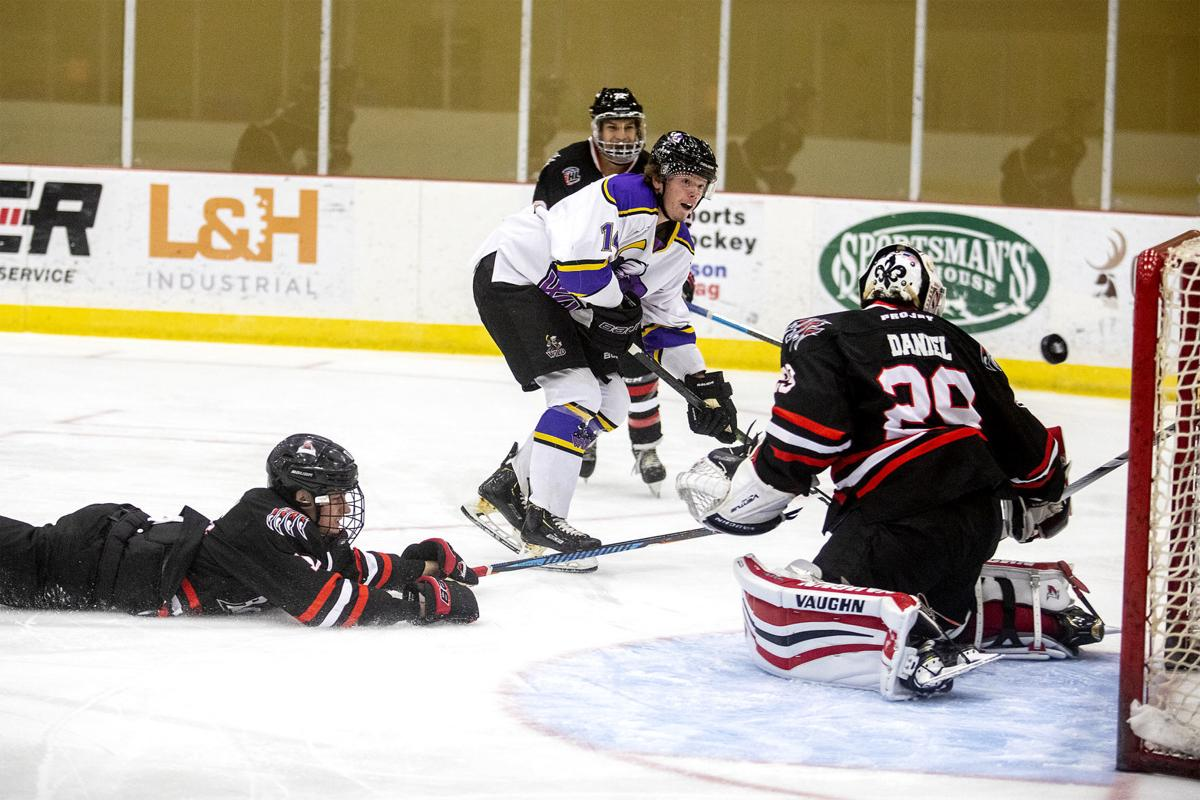 Wild hockey (copy)