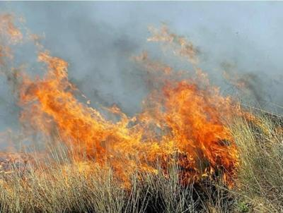 743-acre fire Tuesday