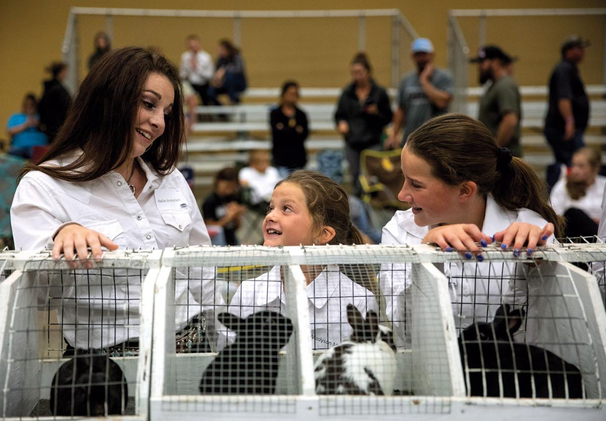 Youth Rabbit Show