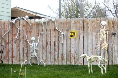 Skeleton scatter