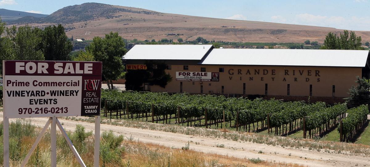 Grande River Vineyards for sale, after 33 years helping shape the state's vineyard industry