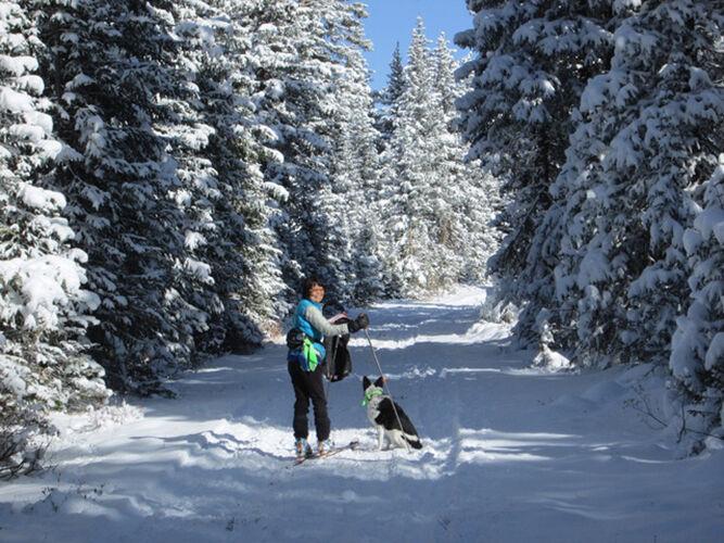 Open trails: Grand Mesa Nordic Council ready for new ski season