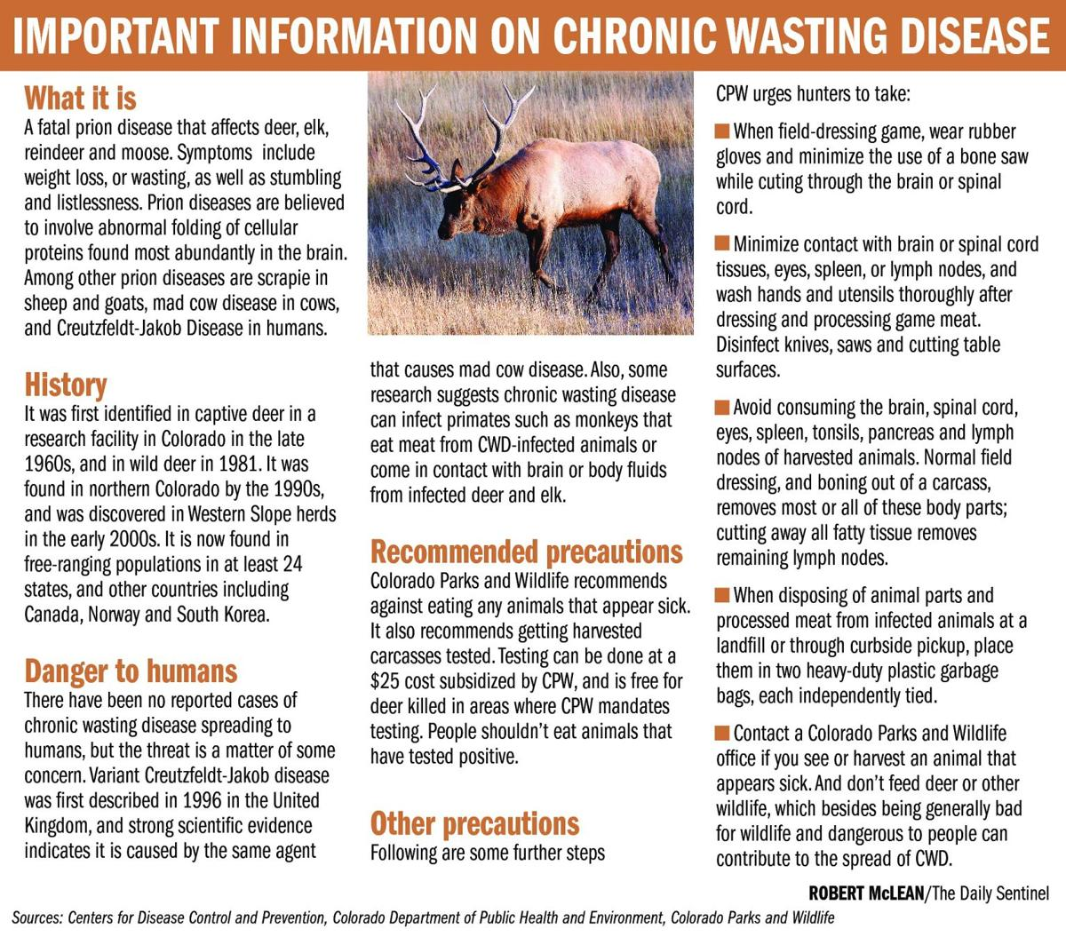 Chronic wasting malady threatening deer, other herds