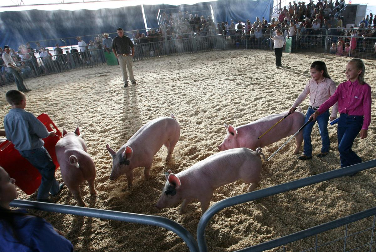Fair time! Community Night, InflataVille among new attractions at Mesa County Fair