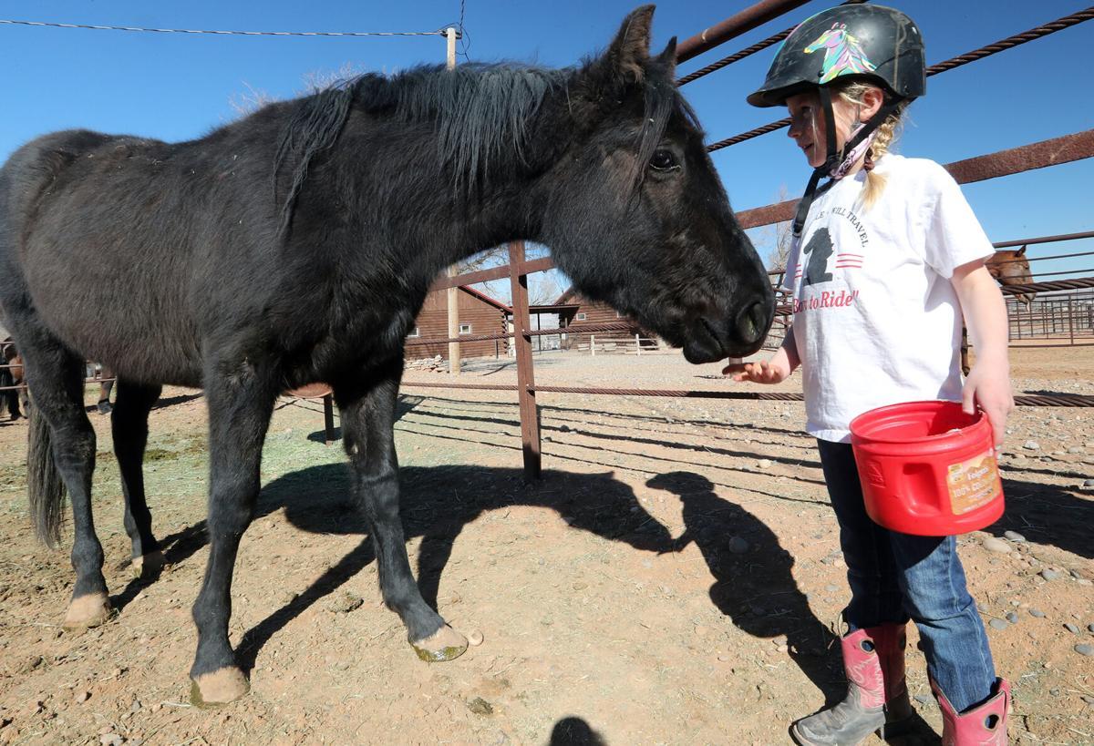 030521-Horse Rescue 1-CPT