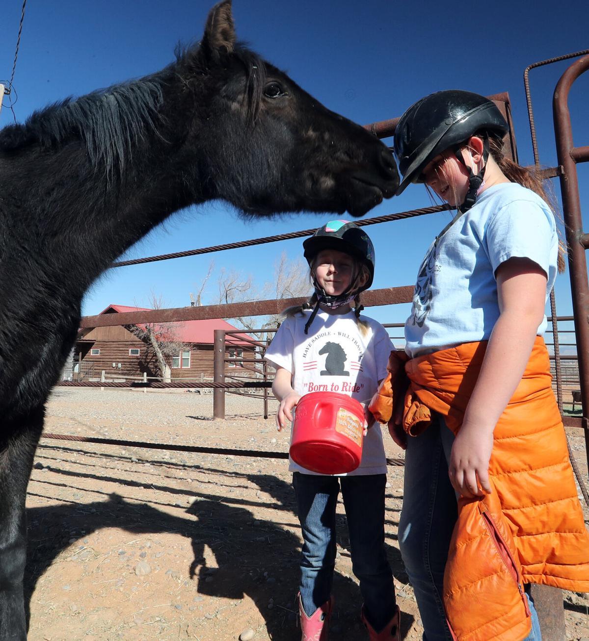 030521-Horse Rescue 2-CPT