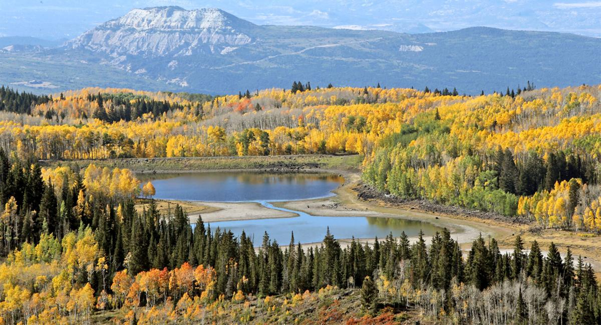 Fall on the Grand Mesa 6 CPT 092018