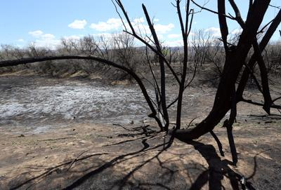 Skipper Island fire forces closure