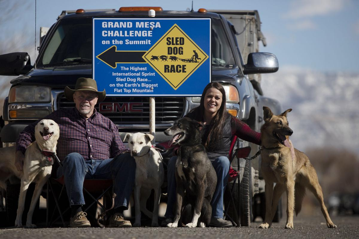 Learning to mush is a dream come true for first time sled dog racer