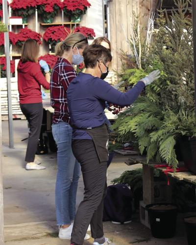 Watering with warm water, using treatments can help keep natural holiday décor fresh
