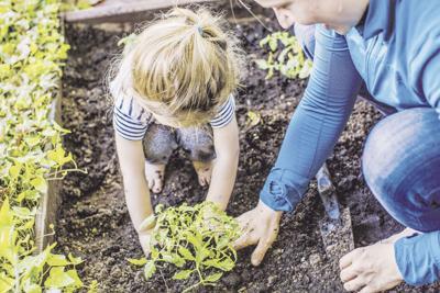 stock_gardening