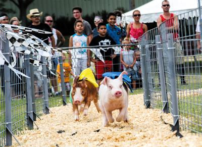 Waukesha County Fair moving forward with July dates